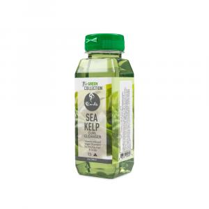 Curls – Sampon cu alge de mare 236 ml